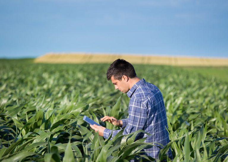 Vrednotenje kmetijskih in gozdnih zemljišč razburja kmete